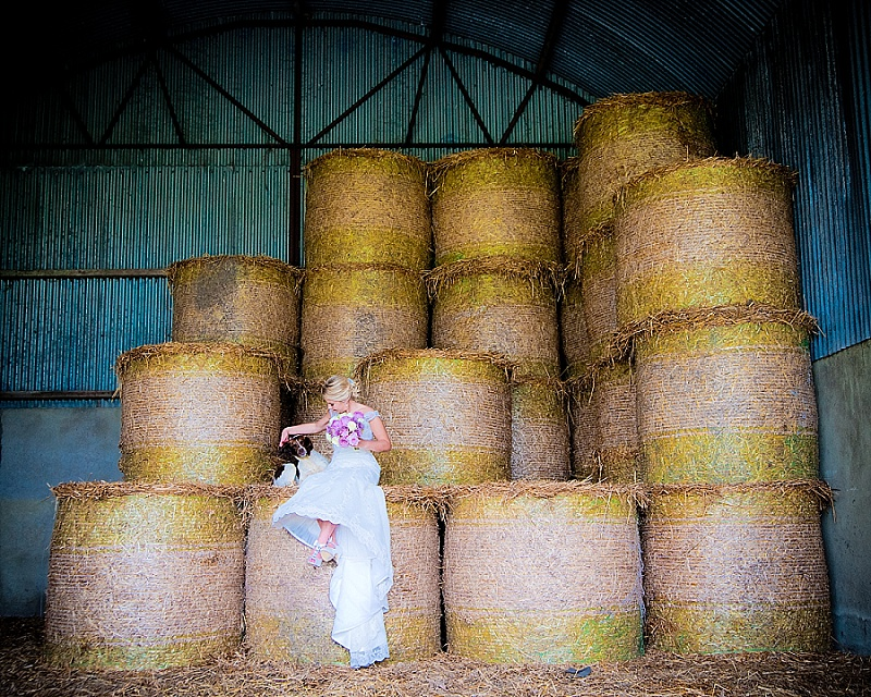 Bride sits on hay with dog