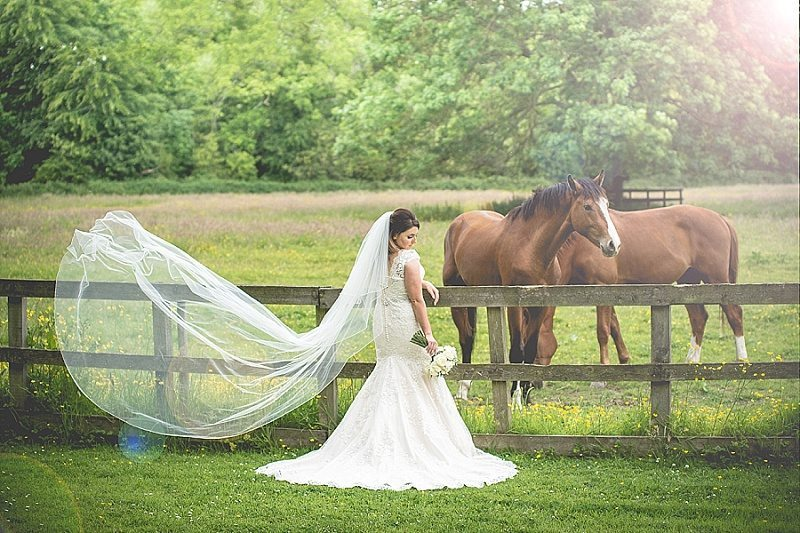Bride standing in front of fence in the countryside with horses and veil blowing in the wind