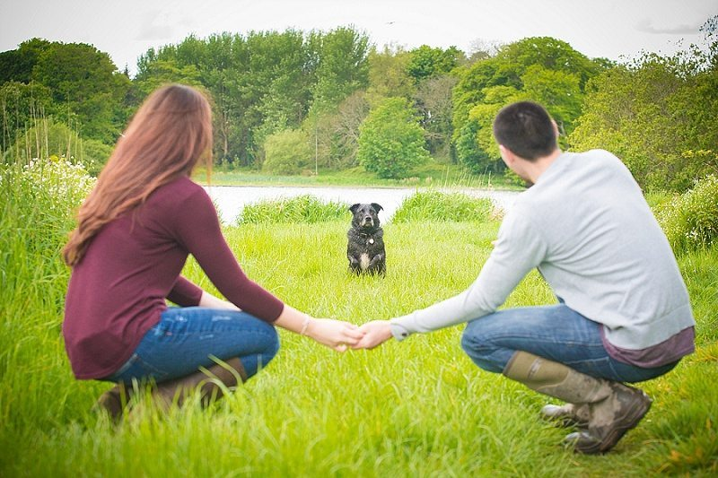 couple holding hands with dog