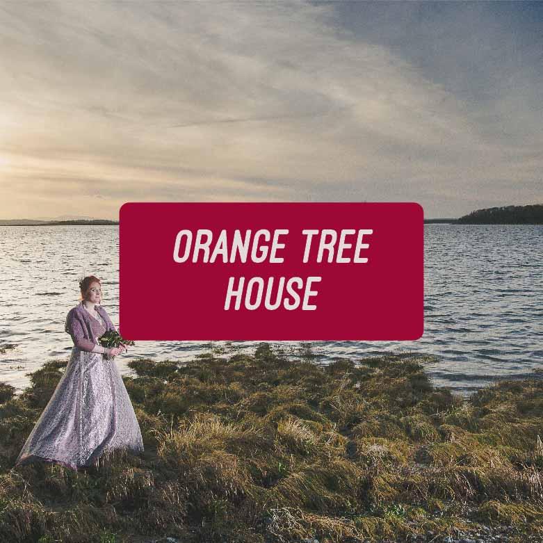 Laid back Bangor Castle and Orange Tree House Greyabbey Wedding Photographs