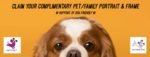Thank you gift: Dog Friendly NI - Complimentary Pet/Family Portrait & Frame