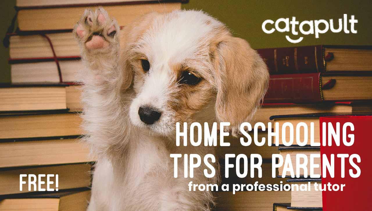 Home schooling free e-book