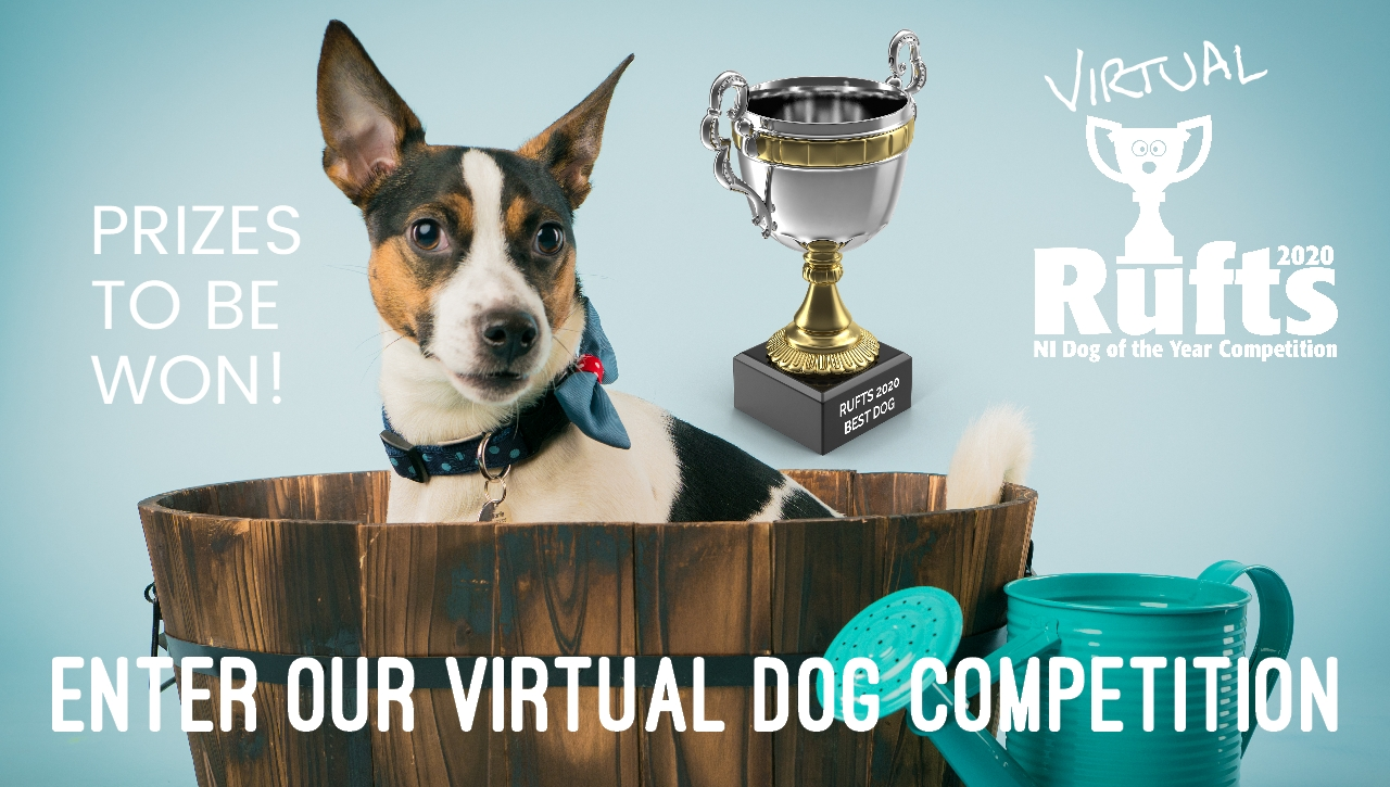 Best Dog Contest
