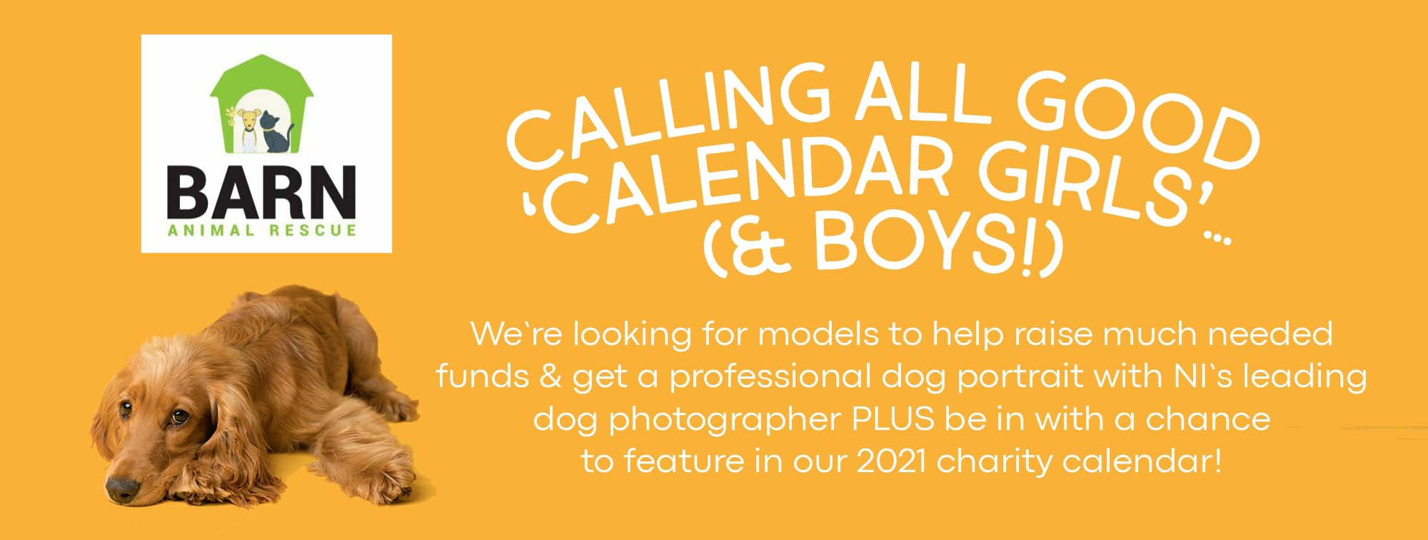 Charity Calendar Dog Photo Shoot in aid of The Barn Animal Rescue