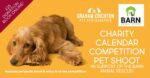 Charity Pet Calendar Competition Photo Shoot in support of The Barn Animal Rescue - £25