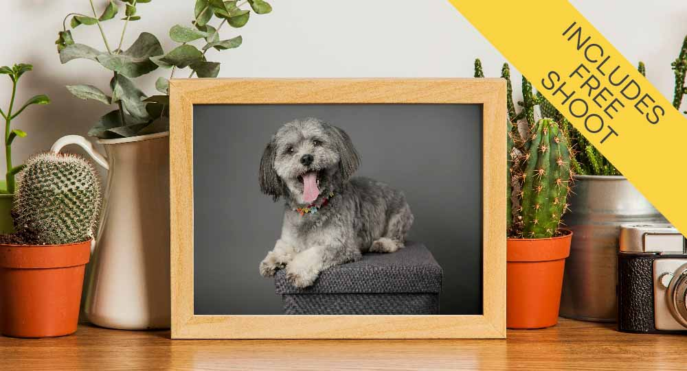 Locally made wall portrait products