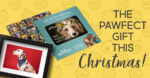 Pet Photography Gift Vouchers
