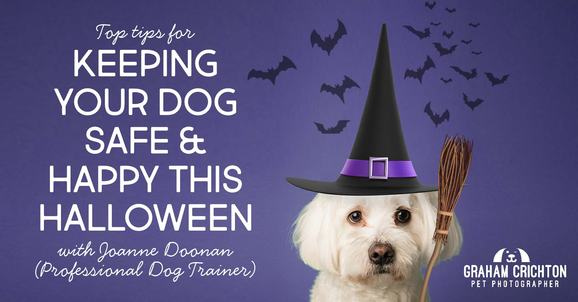 Chinwagging with Joanne Doonan – Keeping Your Dog Safe & Happy this Howloween
