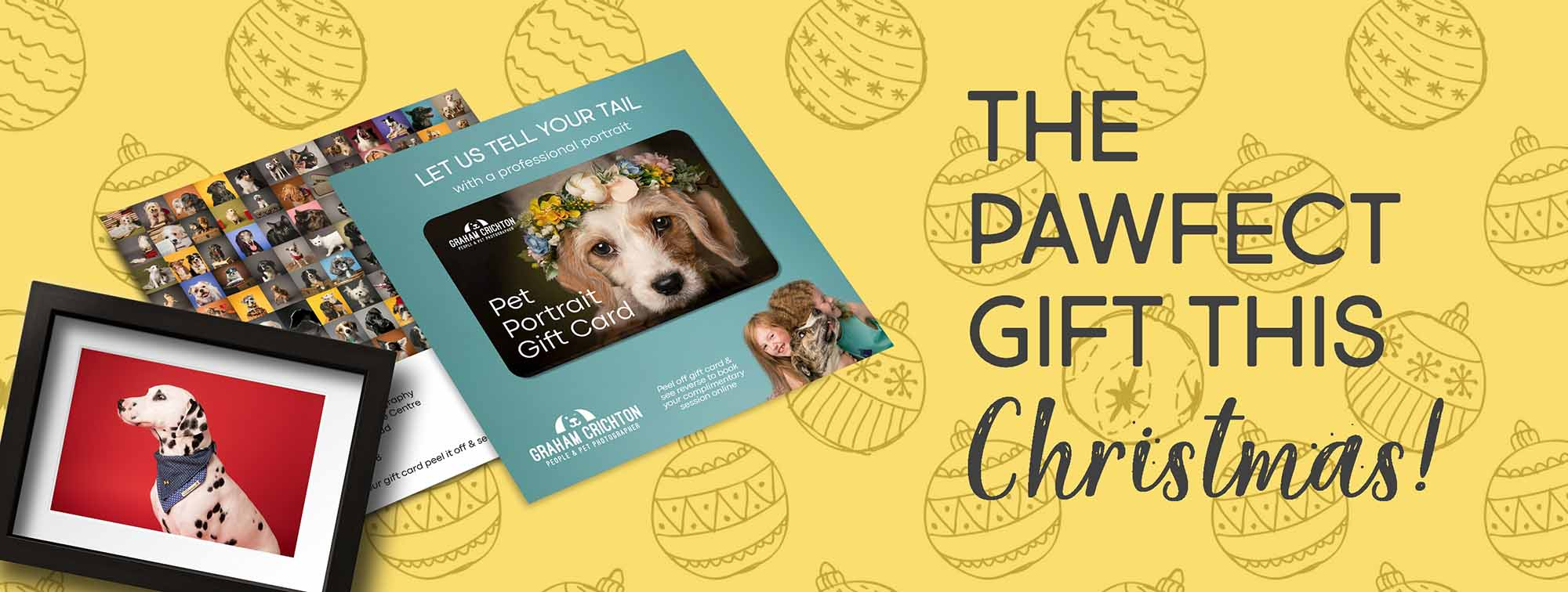 Christmas Pet Photography Gift Vouchers
