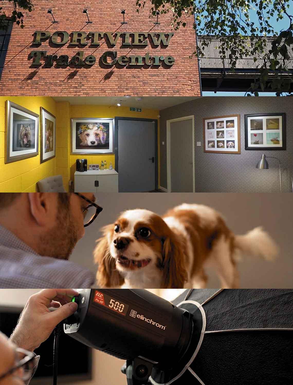 Belfast's Most Popular People & Pet Portrait Studio