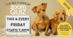 Join Our Big Friday Night Zoom Quiz - EVERY FRIDAY 7:30pm - Just for the Craic!