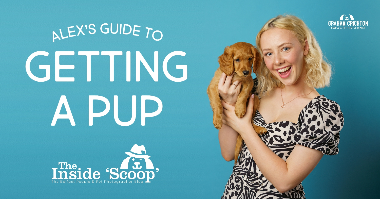 Getting a New Pup Advice